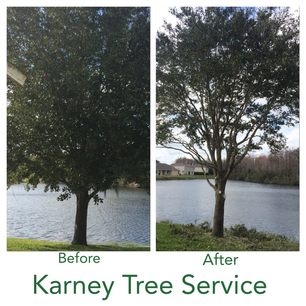 Karney Tree Service image 9