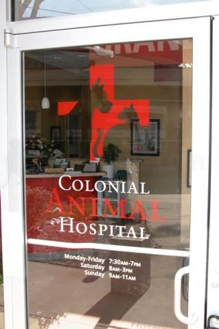 Colonial Animal Hospital image 2