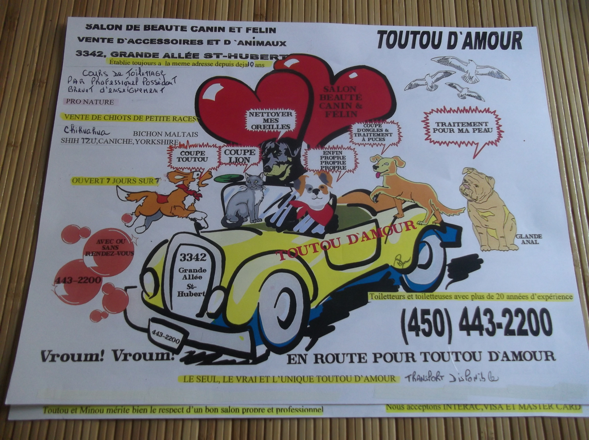 Animalerie Toutou D'Amour à Saint-Hubert