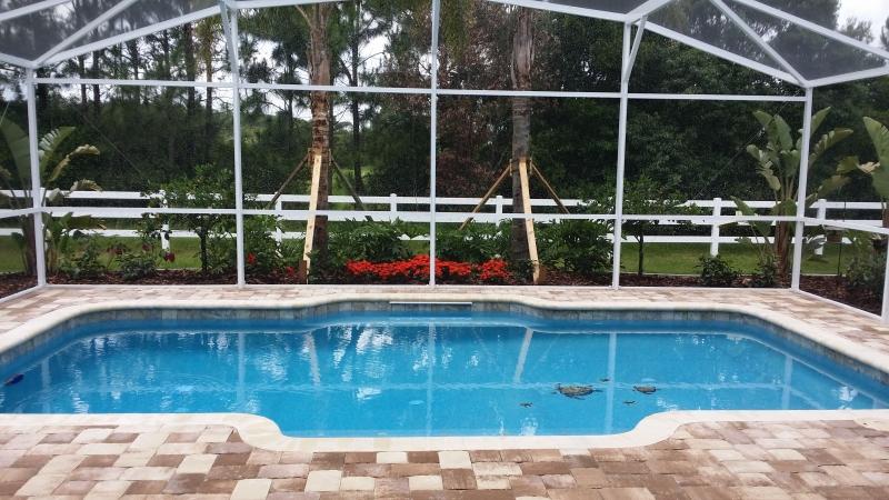 All Seasons Pools image 42