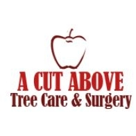 A Cut Above Tree Care & Surgery