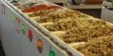 There is a HUGE Variety of Fresh Fish and Fresh Seafood from Billy's Seafood
