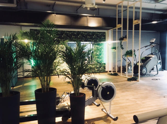 mcfit fitnessstudio ffnungszeiten mcfit fitnessstudio friedrichshofener stra e. Black Bedroom Furniture Sets. Home Design Ideas