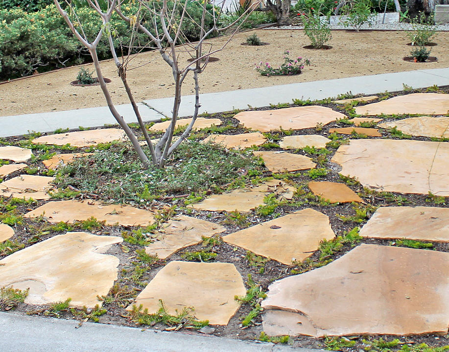 Flores Landscaping image 40