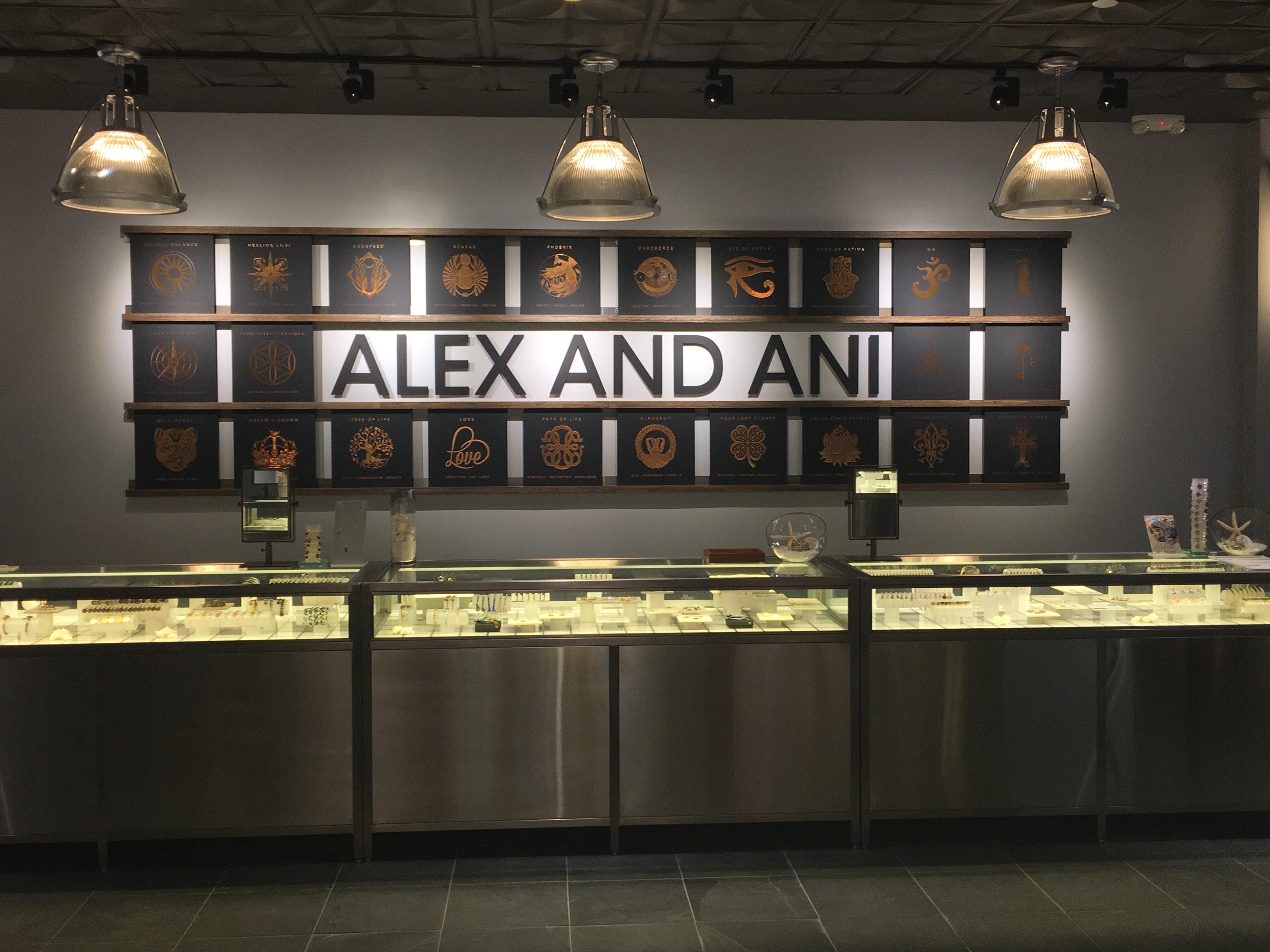 ALEX AND ANI - CLOSED image 1