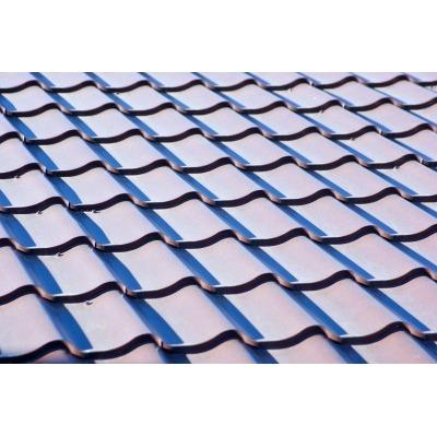 Ed's Tile & Shingle Roof Cleaning