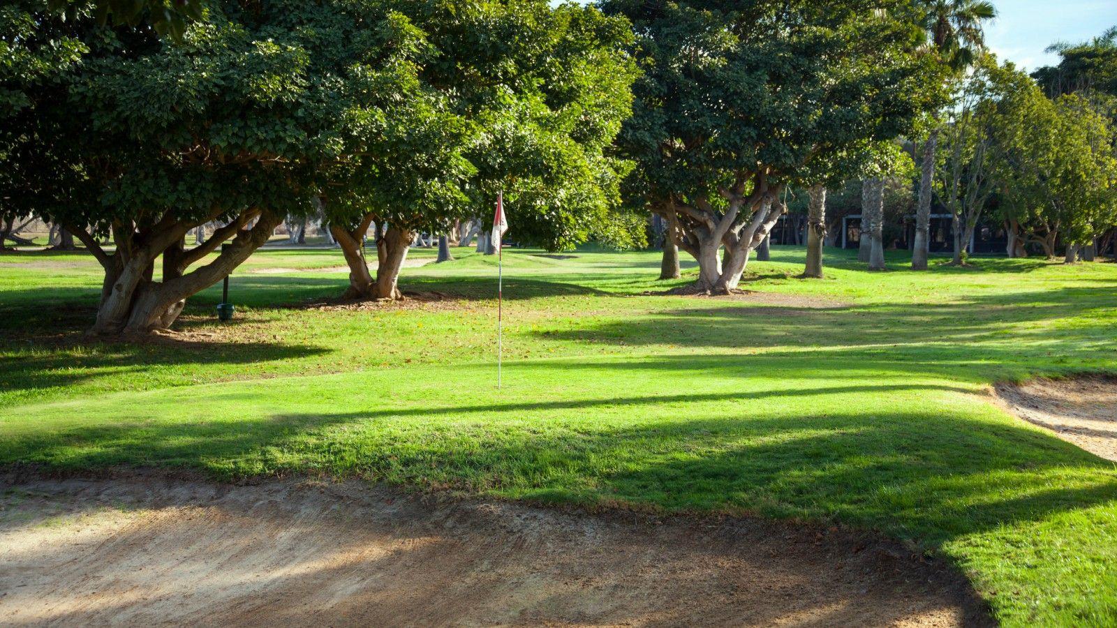 Four Points by Sheraton San Diego image 8