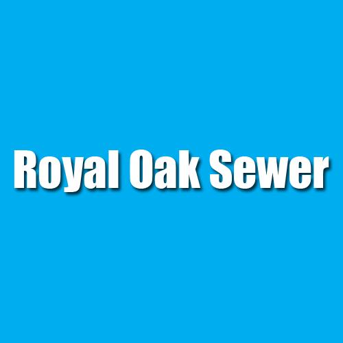Royal Oak Sewer image 0