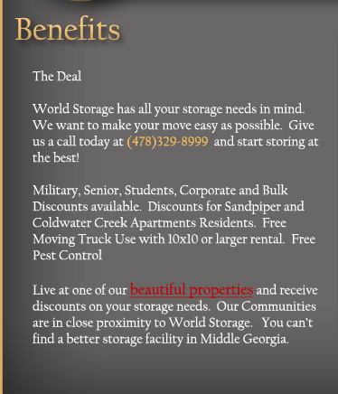 World Storage image 3