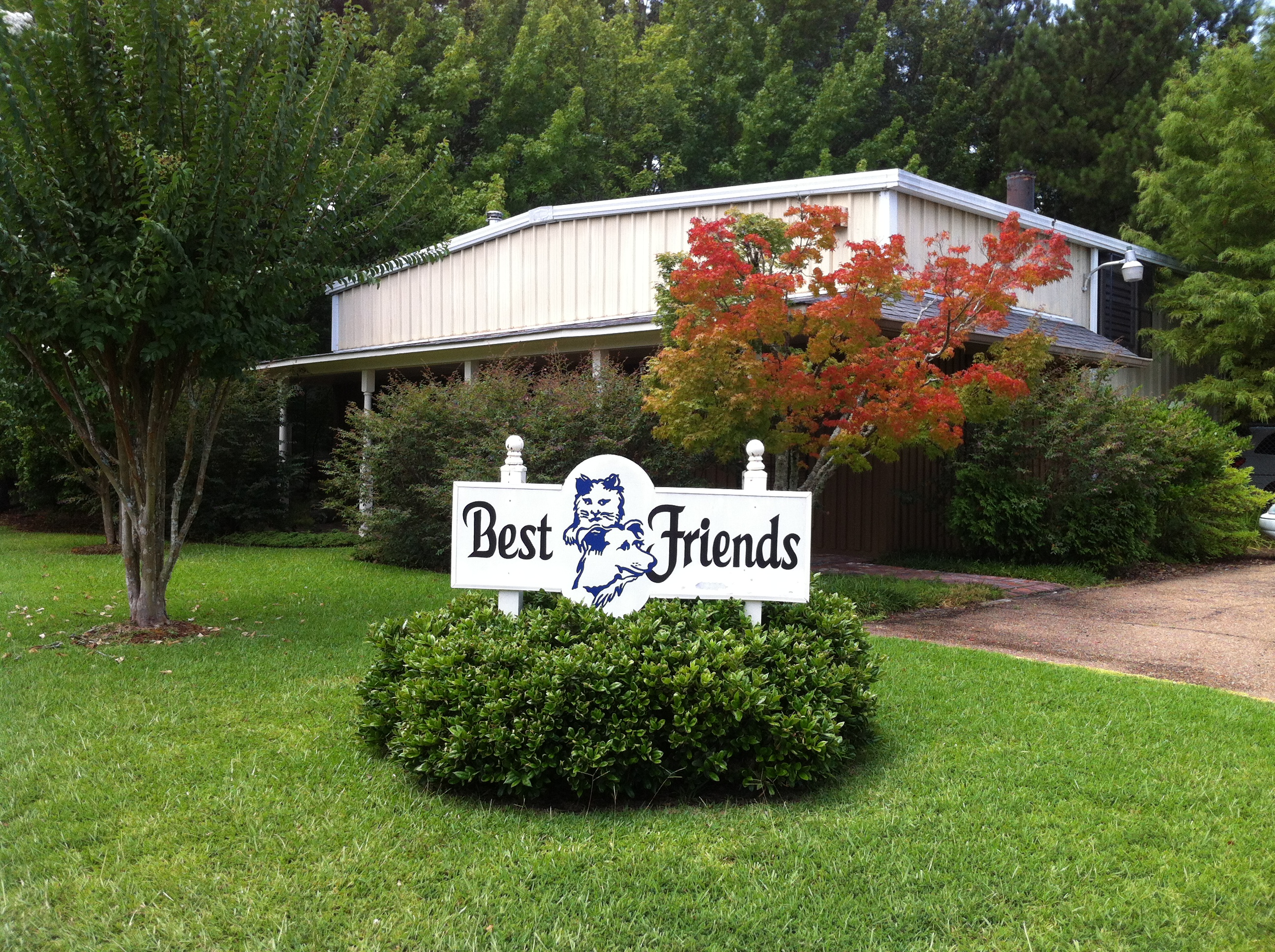 Best Friends of Mississippi image 0