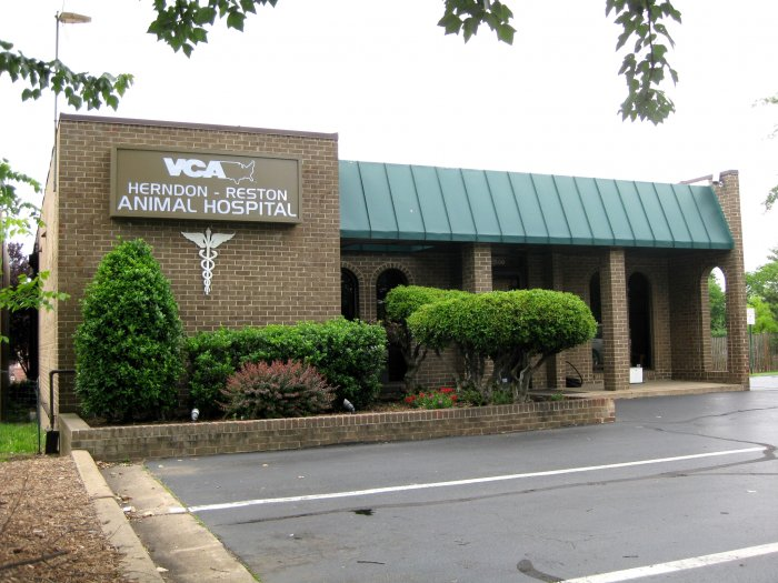 VCA Herndon-Reston Animal Hospital image 7