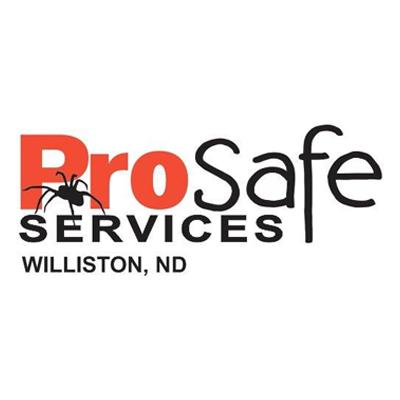 Pro Safe Services Inc.