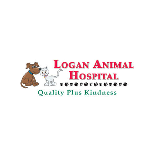 Logan Animal Hospital in Logan, WV, photo #1