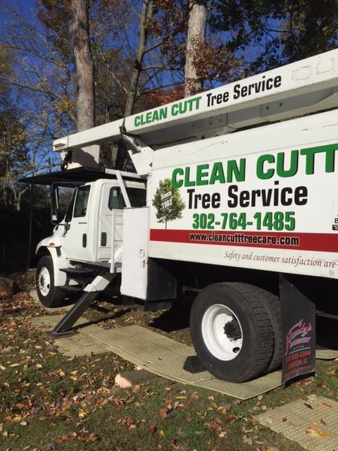 Clean Cutt Tree Service LLC image 0