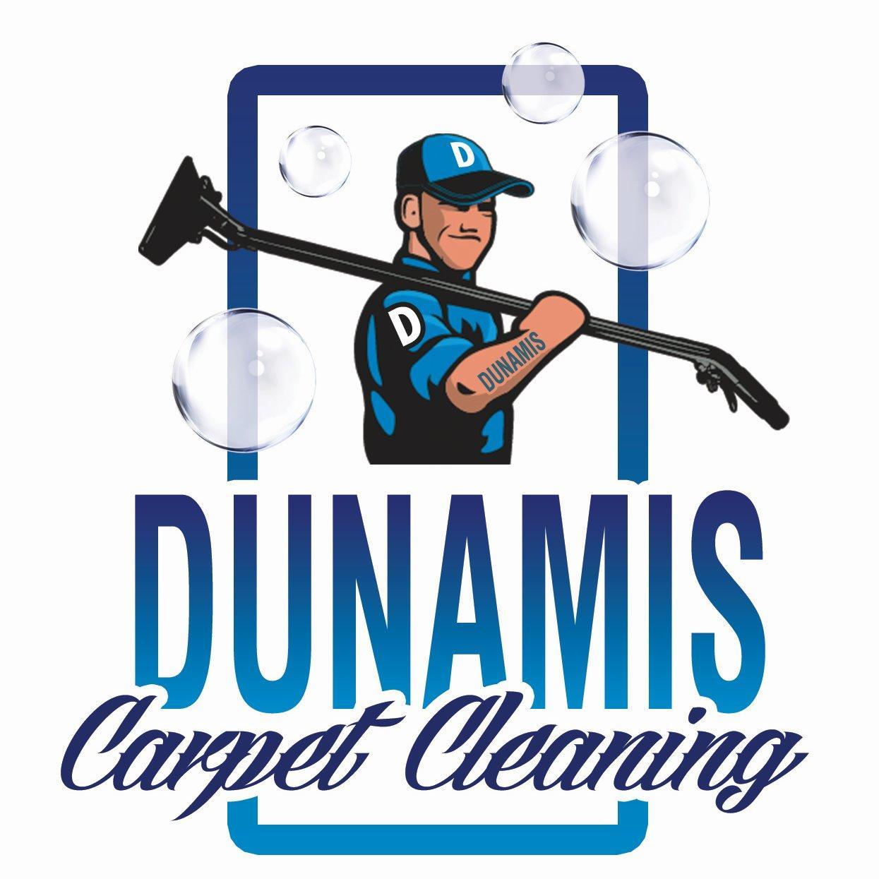 Dunamis Carpet Cleaning image 1
