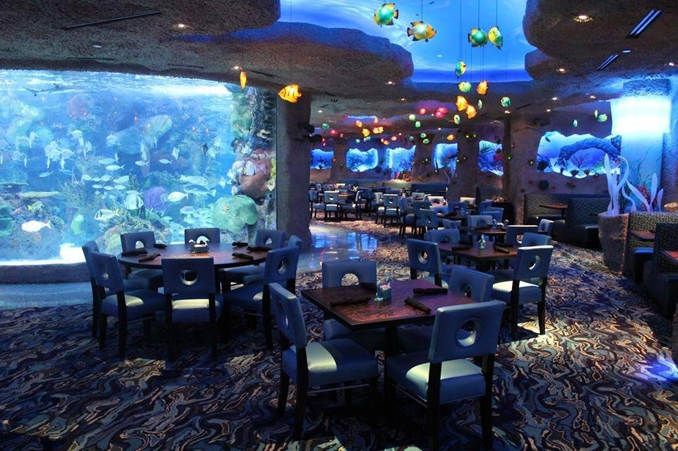 Aquarium Restaurant Coupons Near Me In Nashville 8coupons