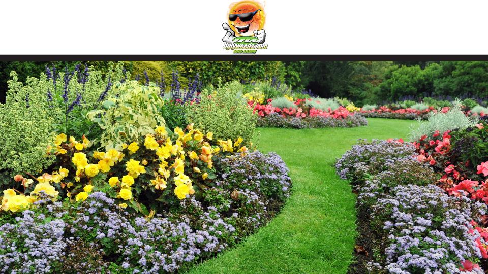 Gro Lawn, Inc. image 0