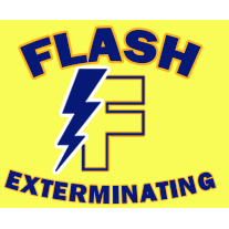 image of the Flash Exterminating