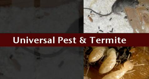 Universal Pest & Termite image 1