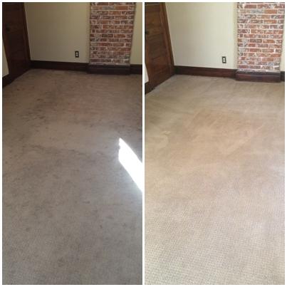 Pristine Carpet Cleaning image 23