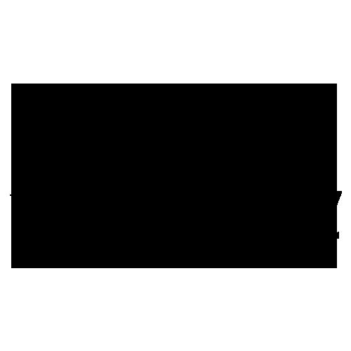 MINI of Charleston