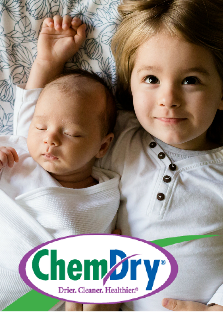 The Natural, is our main product that is used for carpet and upholstery cleaning. The Natural, like its name suggests, is natural and does not contain any harsh chemicals or bad toxins. All our products and processes are natural and safe for children and pets. Have confidence when you call Chem-Dry of Hendricks County