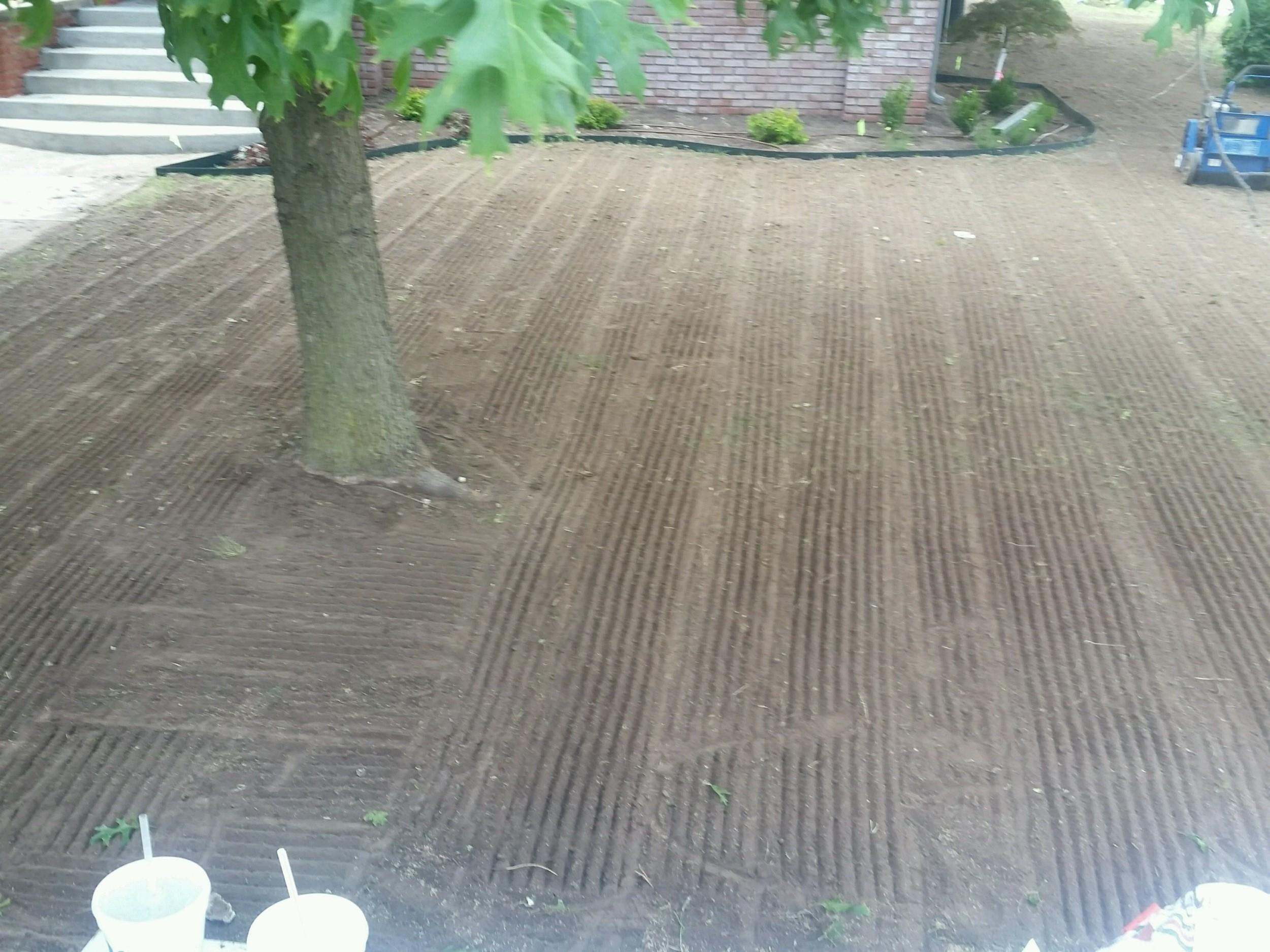 Sallee Lawn Care image 13