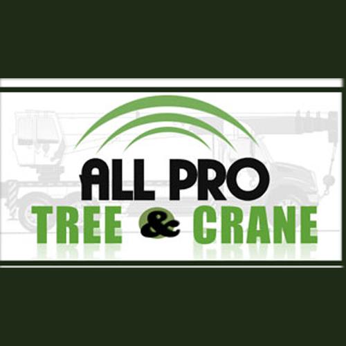 All Pro Tree & Crane