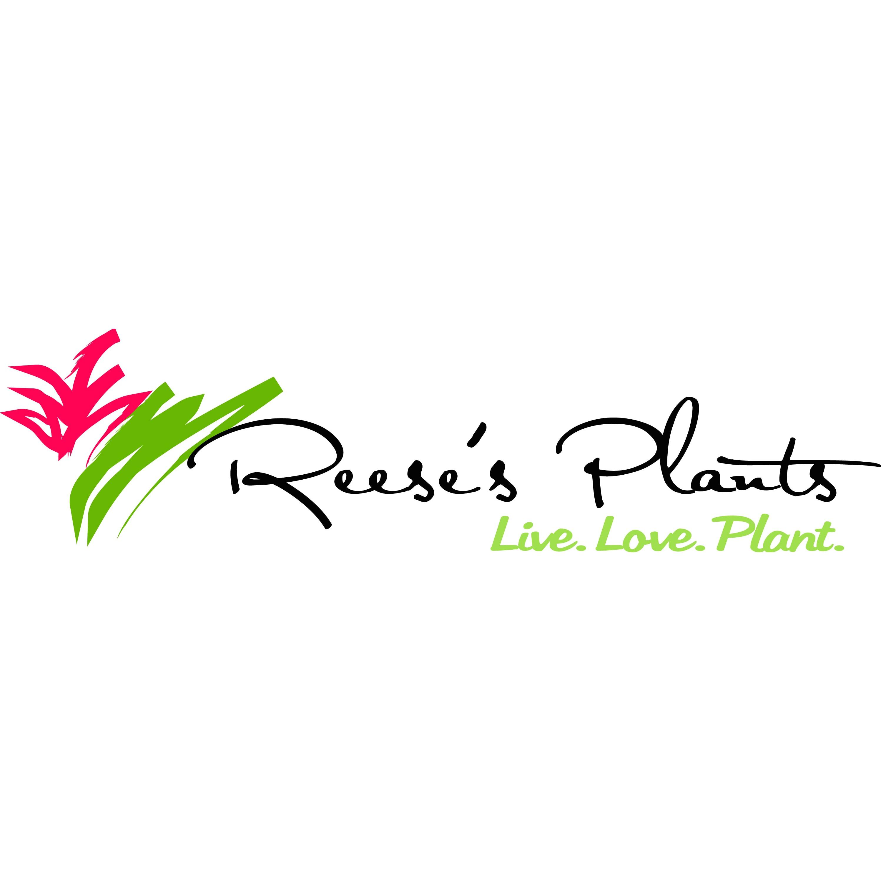Reese's Plants image 0