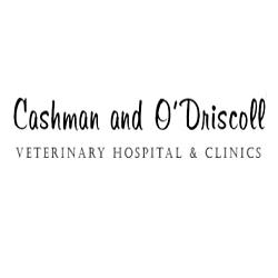 Cashman & O'Driscoll