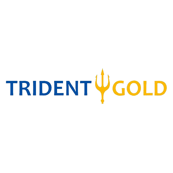 Trident Gold image 2
