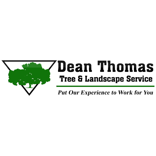 Dean thomas tree landscape service business directory for Tree and garden services
