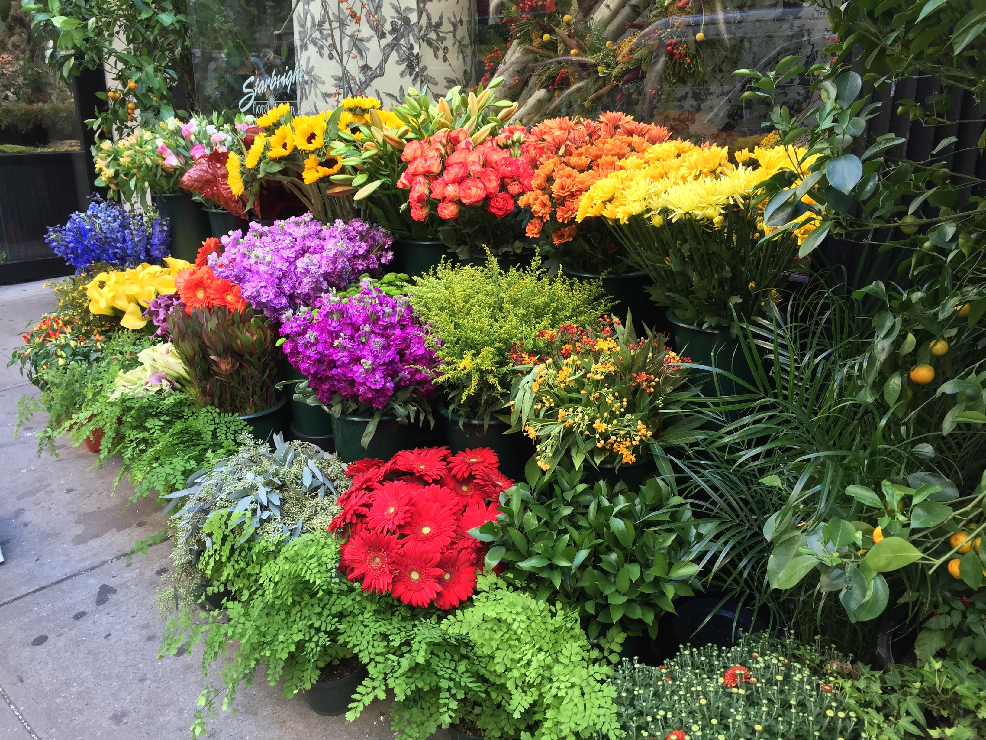 Starbright Floral Design in New York NY 212 229 1