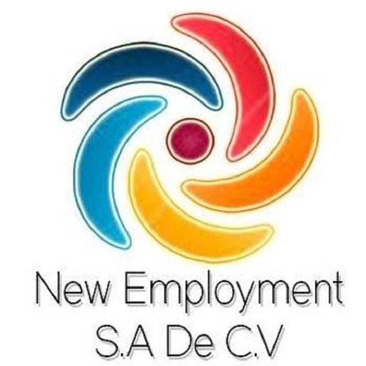NEW EMPLOYMENT SA DE CV