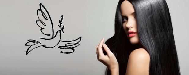 Carmen Beauty Supply in Las Vegas, NV 89146   Citysearch