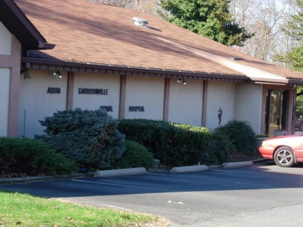 Aquia-Garrisonville Animal Hospital image 0