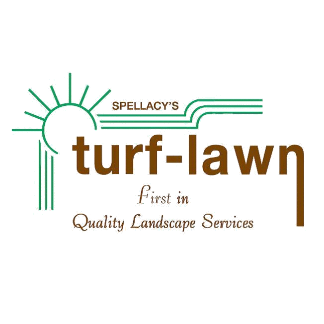 Spellacy's Turf-Lawn image 0