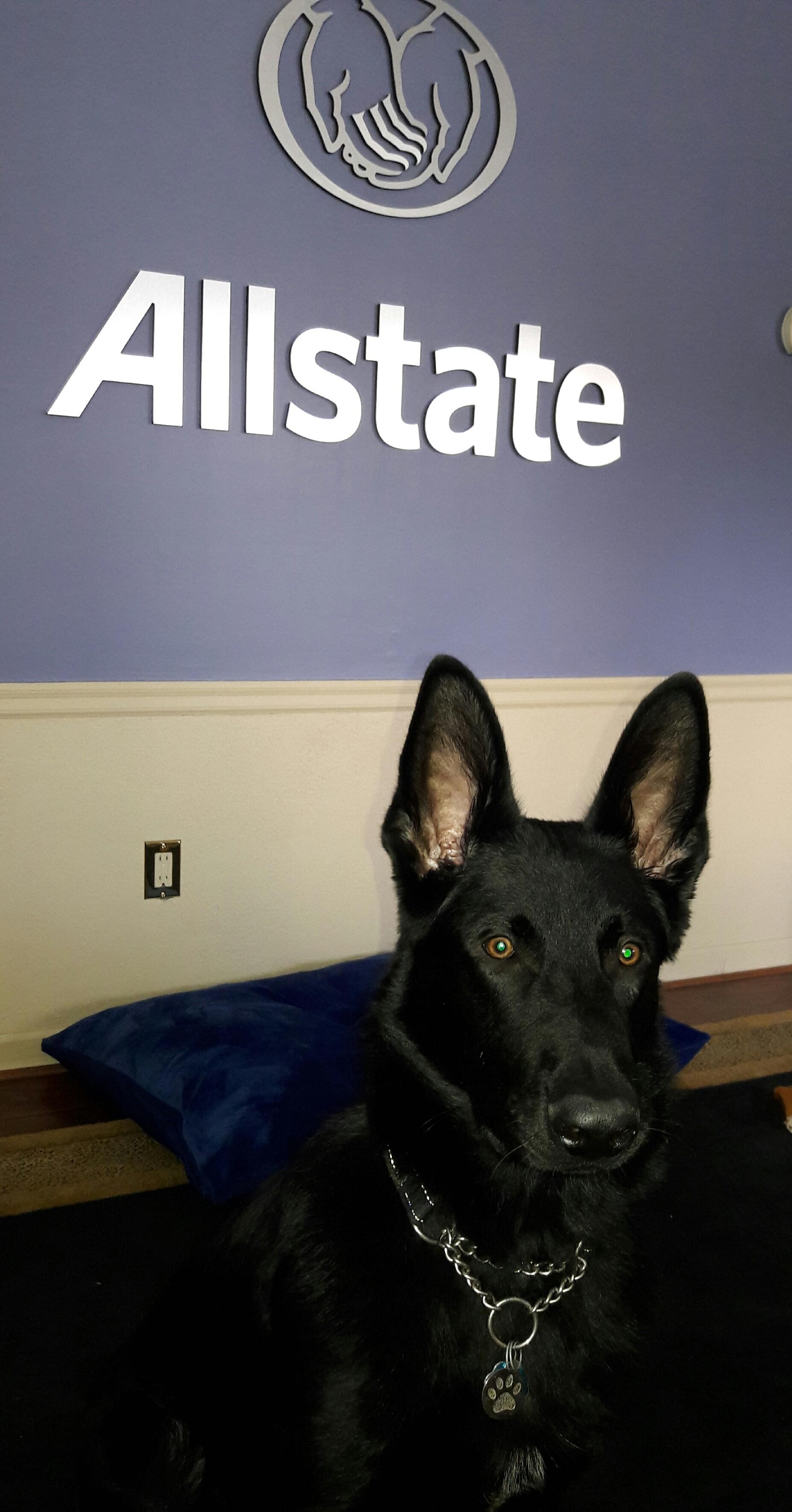 Julia Miller: Allstate Insurance image 2