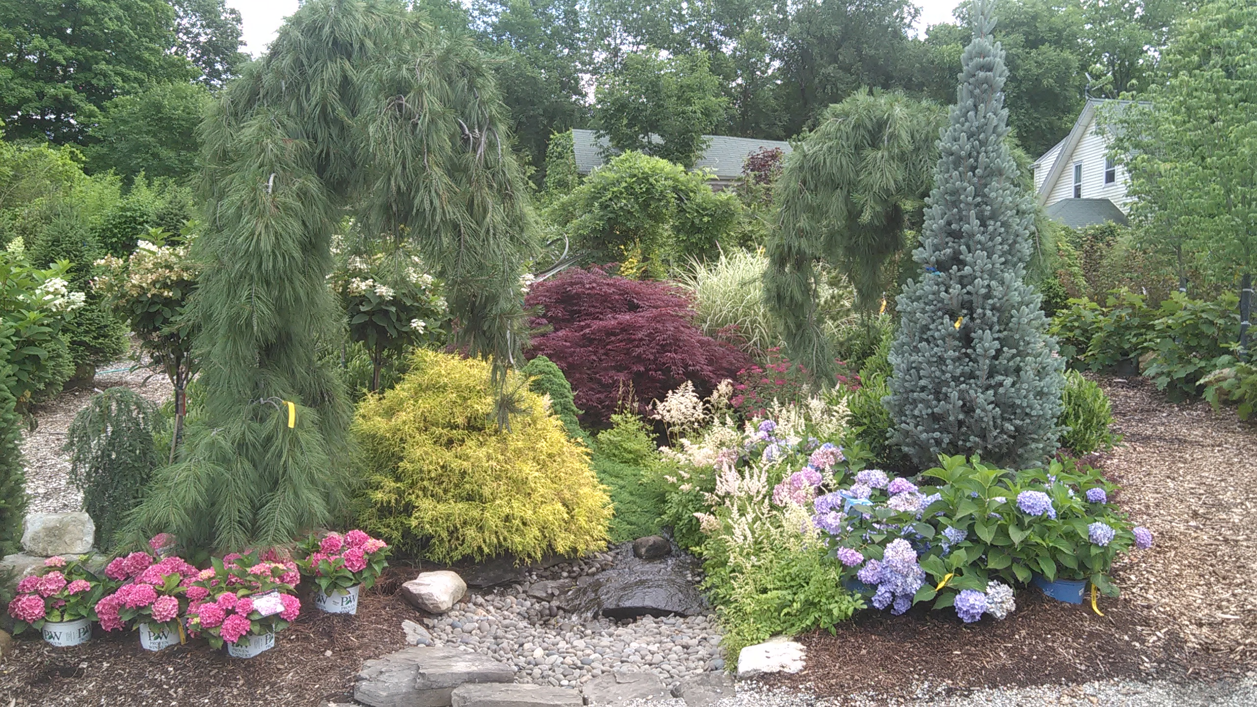Scott's Landscaping & Nursery image 4