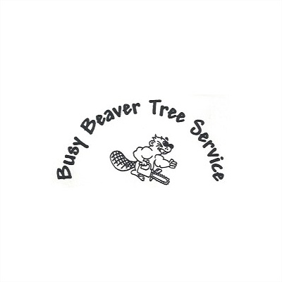Busy Beaver Tree Service - Wyoming, PA - Tree Services