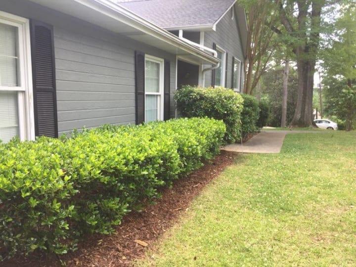 Dynasty Fence & Lawn image 1