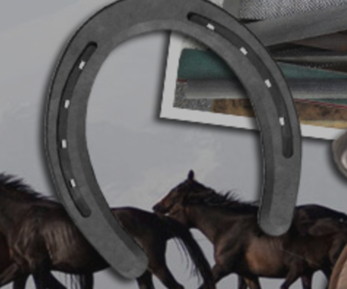 Olympia Farrier Supply image 7