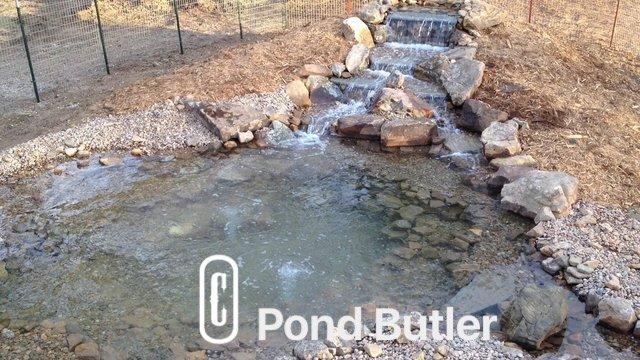 Pond Butler image 1