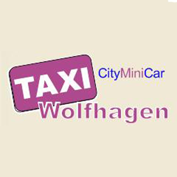taxi wolfhagen inh franz josef lassner wolfhagen. Black Bedroom Furniture Sets. Home Design Ideas