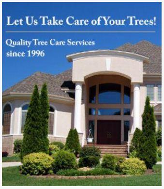 Tree Doctor image 0