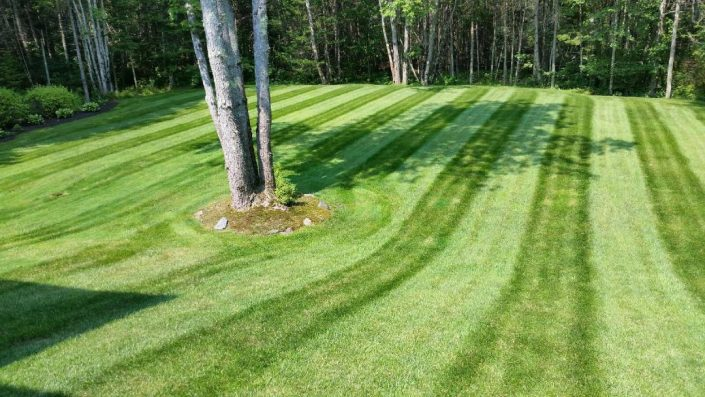 Mainely Grass, Inc