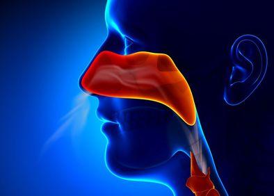Chesapeake Ear Nose & Throat | Rosedale, MD, , Facial Plastic Surgeon