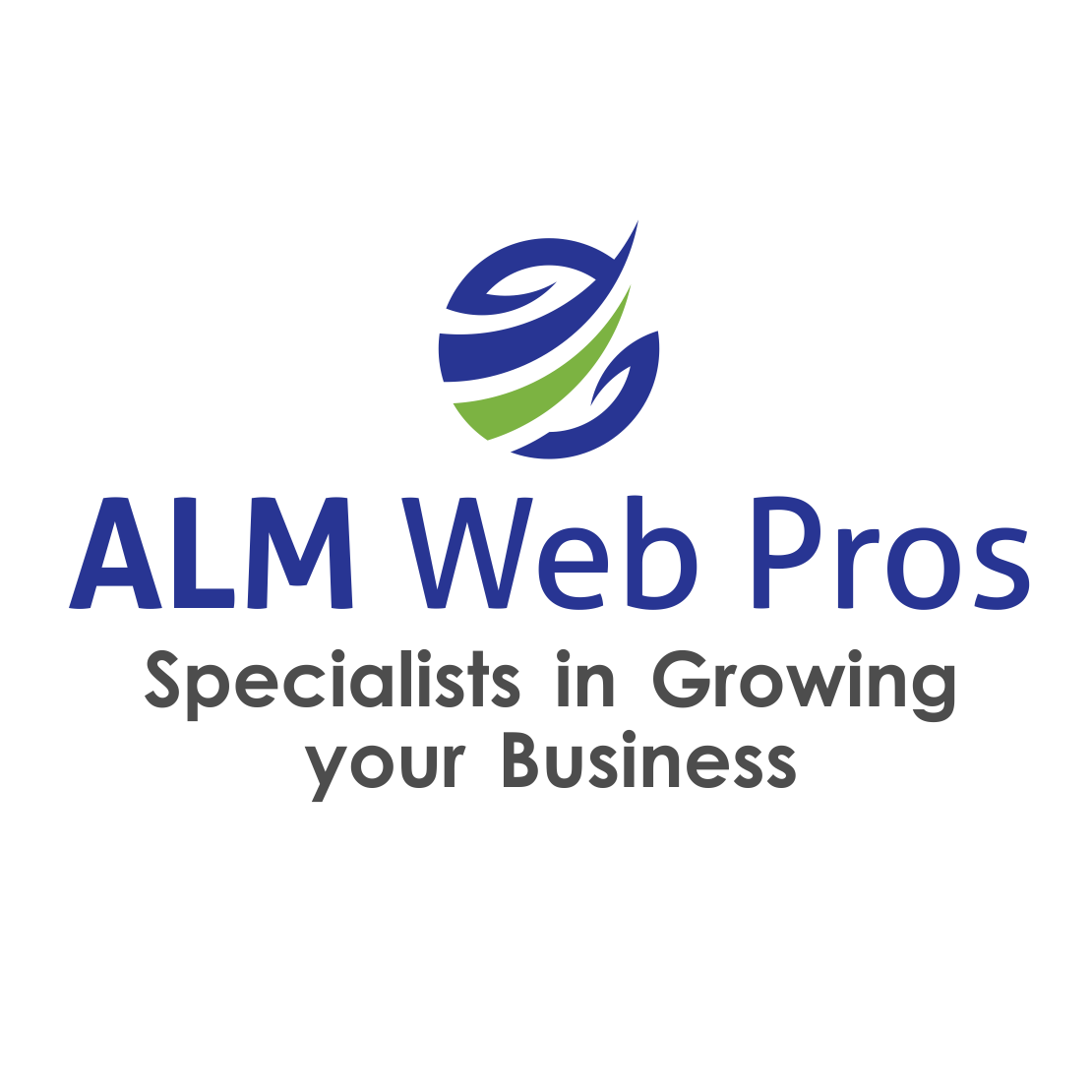 ALM Web Pros LLC image 4