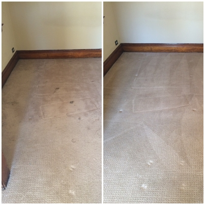Pristine Carpet Cleaning image 22