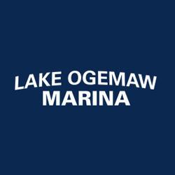 Lake Ogemaw Marina image 8